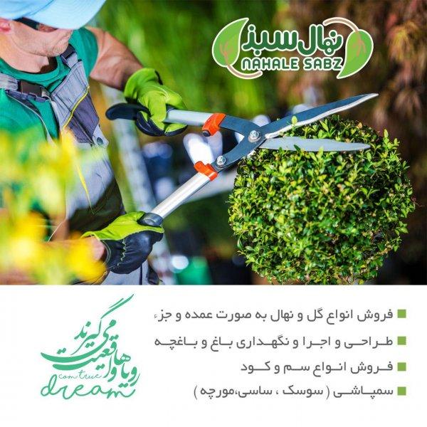 شرکت نهال سبز